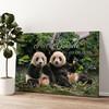 Orsi panda Tela personalizzata