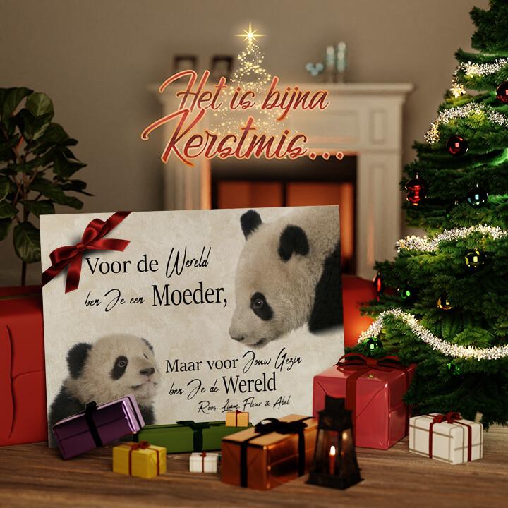 Canvas Cadeau Moeder Panda