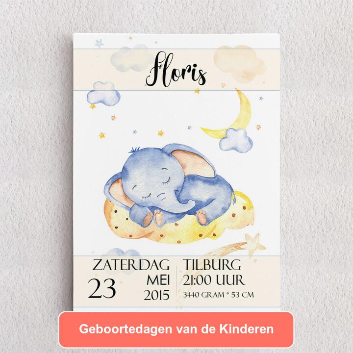 Gepersonaliseerde Canvas Canvas voor geboorte olifant droomt