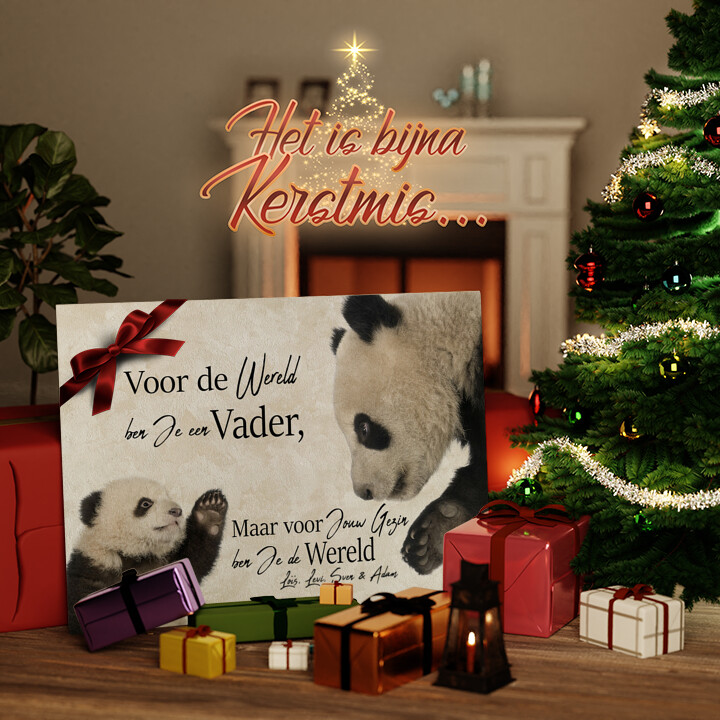 Canvas Cadeau Pandavader