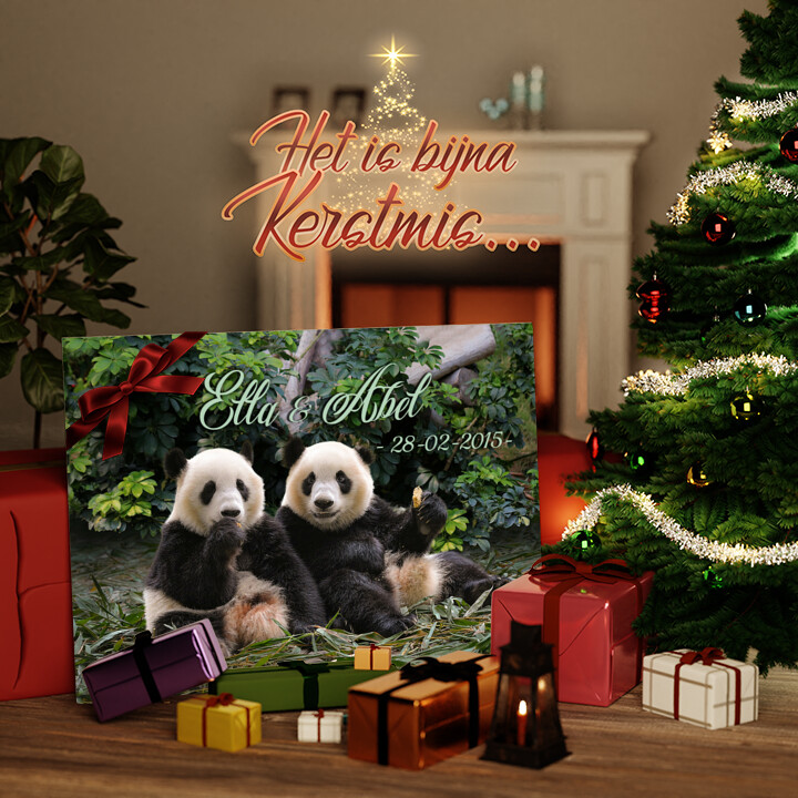 Canvas Cadeau Panda beren