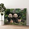 Panda beren Gepersonaliseerde muurschildering
